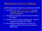 mechanism of a to i editing