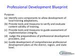 professional development blueprint