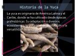historia de la yuca