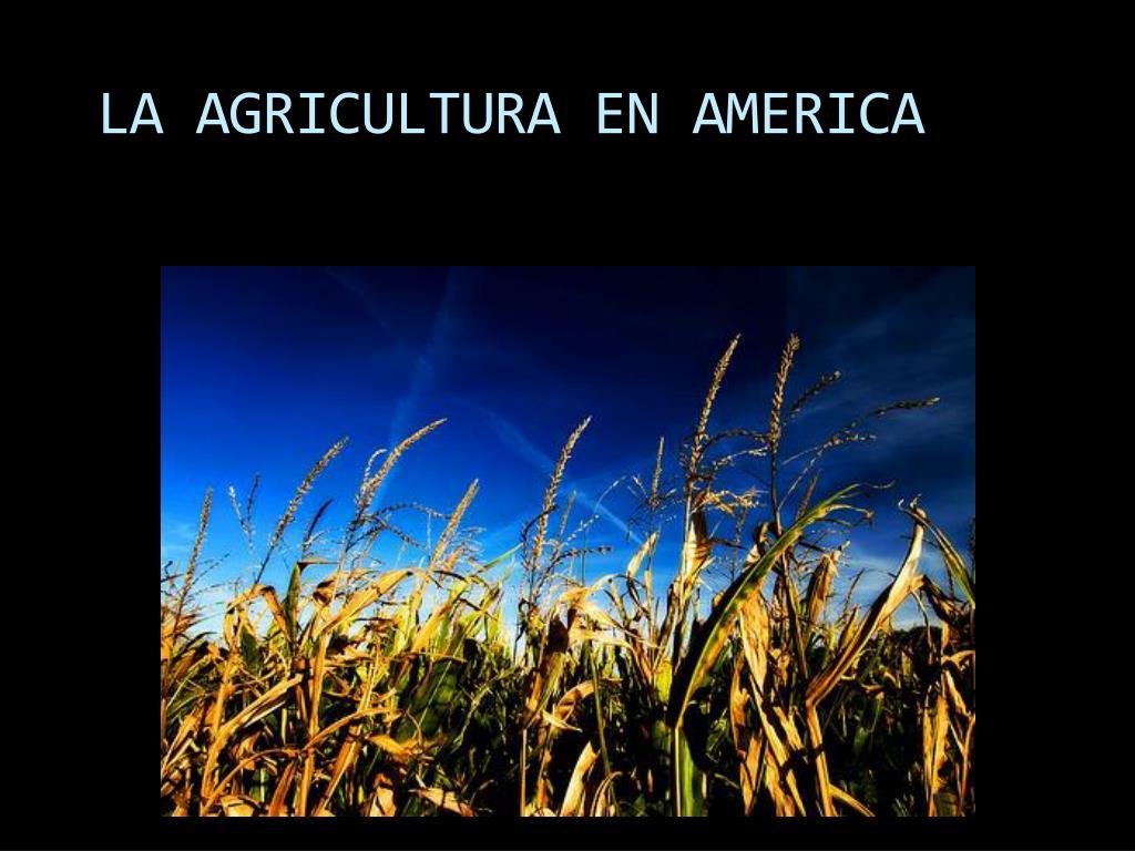 la agricultura en america l.