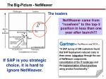 the big picture netweaver