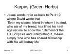 karpas green herbs26