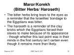 maror korekh bitter herbs haroseth33