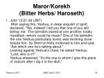 maror korekh bitter herbs haroseth35