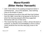 maror korekh bitter herbs haroseth39