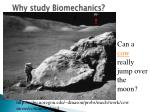 why study biomechanics28