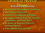 goals of novice stage