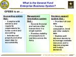 what is the general fund enterprise business system