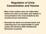regulation of urine concentration and volume