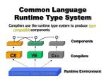 common language runtime type system
