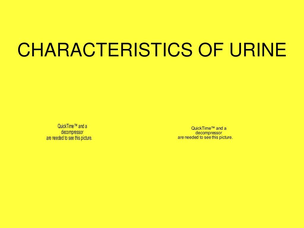 characteristics of urine l.