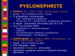 pyelonephrite