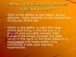 what is the difference between sight and vision