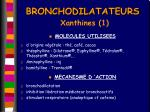 bronchodilatateurs xanthines 1