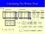 calculating the within theil16