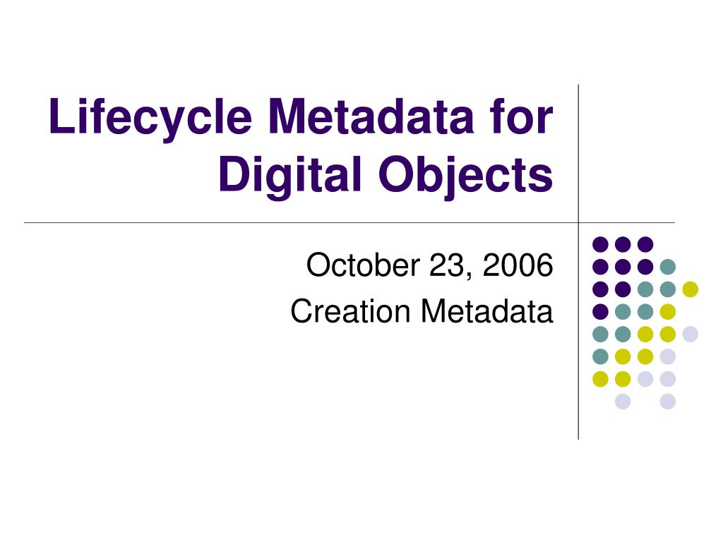 lifecycle metadata for digital objects l.