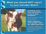 what you should not report to your intruder watch