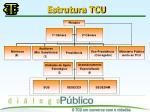 estrutura tcu