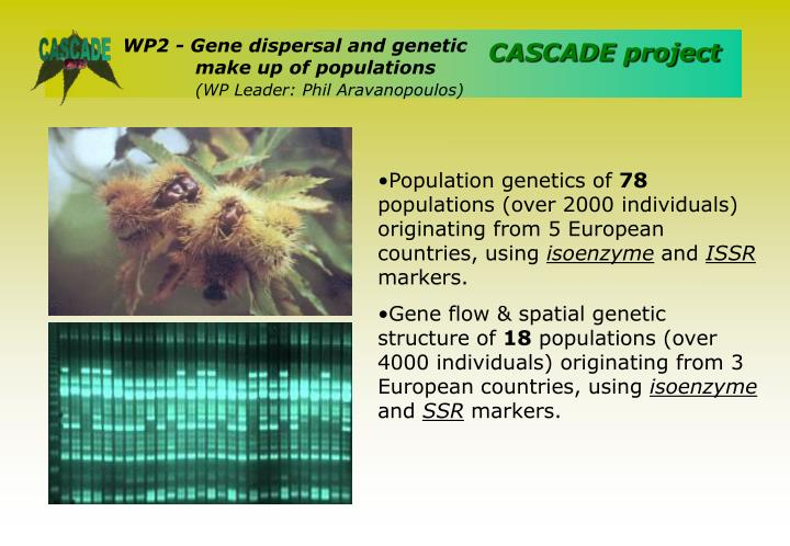 WP2 - Gene dispersal and genetic 	make up of populations