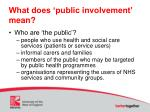 what does public involvement mean
