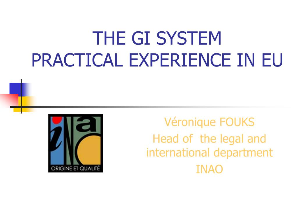 the gi system practical experience in eu l.
