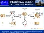 effect of hdac inhibitors on tumor normal cells