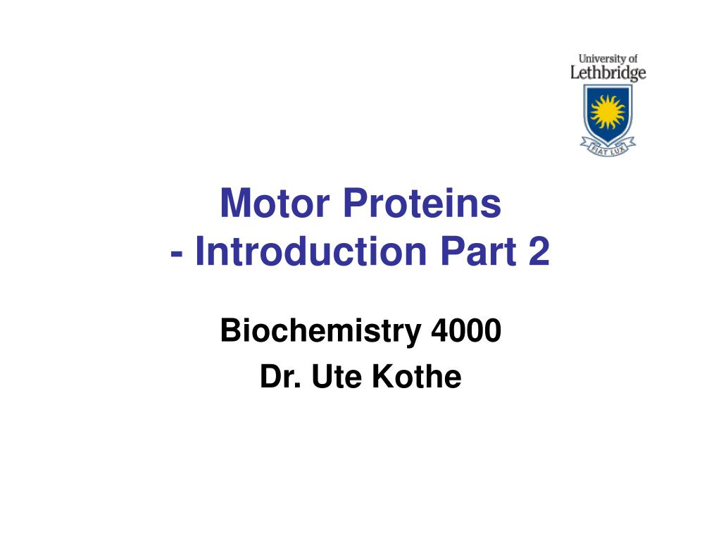 motor proteins introduction part 2 l.