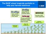 the basf wheat fungicide portfolio to help your harvest stand out