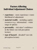 factors affecting individual adjustment choices