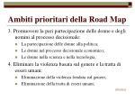 ambiti prioritari della road map80