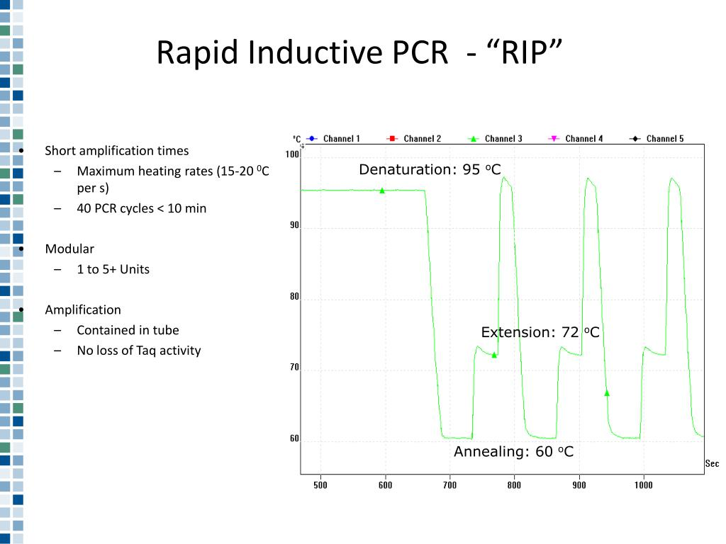 "Rapid Inductive PCR  - ""RIP"""