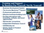 training and support in business for yourself not by yourself