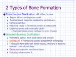 2 types of bone formation
