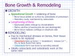 bone growth remodeling