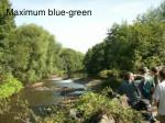 maximum blue green