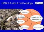 ursula aim methodology