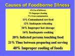 causes of foodborne illness