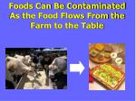 foods can be contaminated as the food flows from the farm to the table