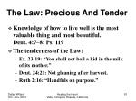 the law precious and tender