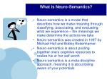 what is neuro semantics