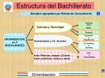 estructura del bachillerato12