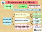 estructura del bachillerato34