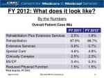 fy 2012 what does it look like