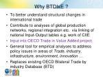 why btdixe