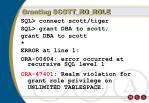 granting scott ro role88