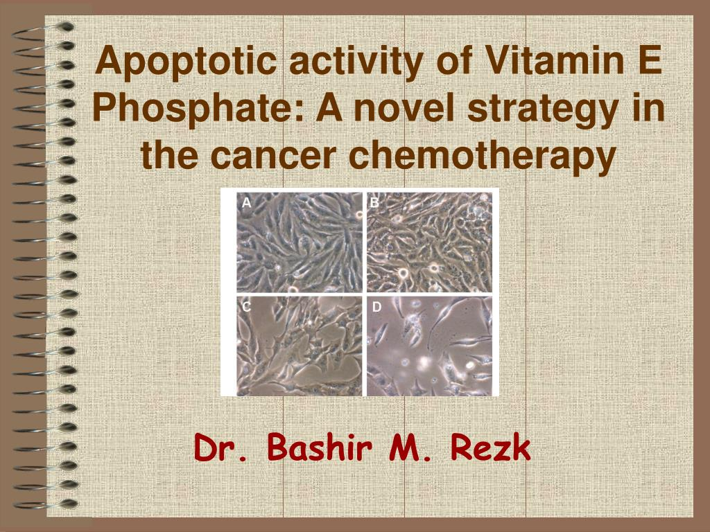 apoptotic activity of vitamin e phosphate a novel strategy in the cancer chemotherapy l.