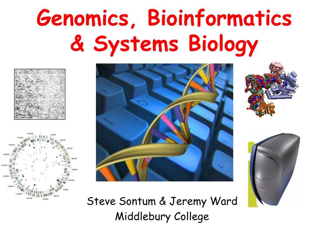 genomics bioinformatics systems biology l.