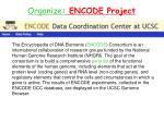 organize encode project