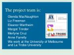 the project team is