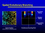 spatial evolutionary branching